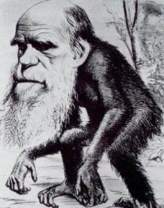 Caricatura Darwin